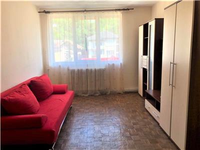 Apartament cu 2 camere in Centru langa Parcul Central